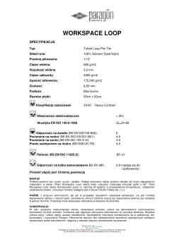 Specyfikacja Workspace Loop