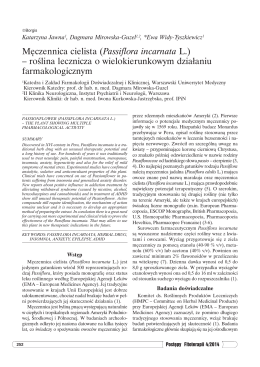 Męczennica cielista (Passiflora incarnata L.)
