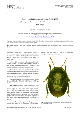A new record of Amaurocoris curtus Brullé, 1838