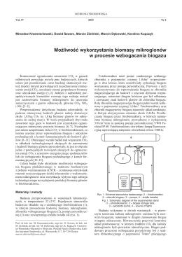 Możliwość wykorzystania biomasy mikroglonów w procesie