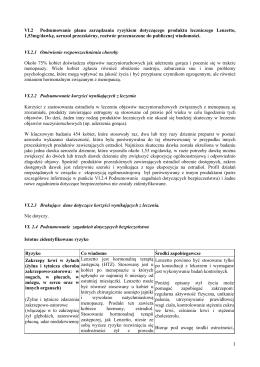 VI.2 Podsumowanie planu zarządzania ryzykiem