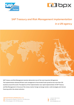 SAP Treasury and Risk Management implementation in a UN agency