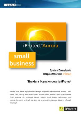 Struktura licencjonowania iProtect