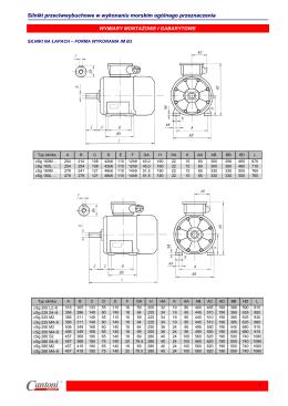 Silniki przeciwwybuchowe w wykonaniu morskim ogólnego