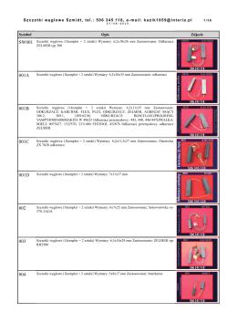 Katalog pdf do pobrania - 009A Szczotki weglowe