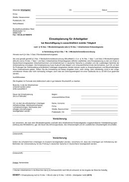 033037 Einsatzplanung nach § 16 Abs. 1 MiLoG oder § 18 Abs. 1