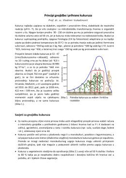 Principi gnojidbe i prihrane kukuruza