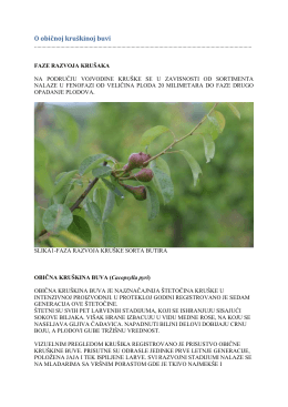 Zelena prognoza 06052016