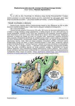 Międzymorze jako łącznik nowego dwubiegunowego