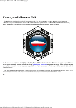 Konsorcjum dla Rosomak BMS - DziennikZbrojny.pl