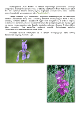 Piaśnickie Łąki - Regionalna Dyrekcja Ochrony Środowiska w