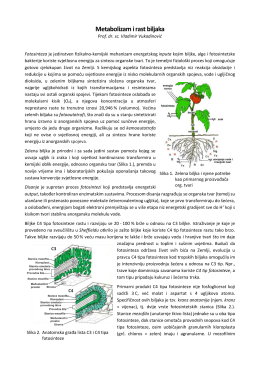 Metabolizam i rast biljaka