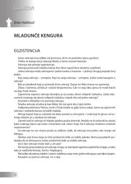 Enes Halilović: MLADUNČE KENGURA