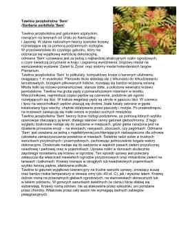 Rośliny, które będą wydawane podczas Warszawskich Dni