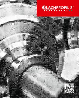 Katalog 2016 - Blachprofil 2