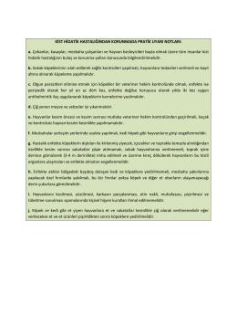 Kist hidatik hastalığından korunmada pratik uyarı notları