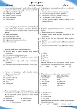 sindirim sistemi 11_sınıf test-8 çözümlü-4