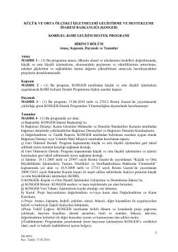 KOBİGEL-KOBİ Gelişim Destek Programı