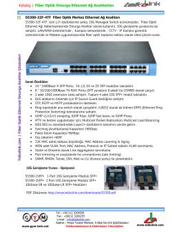 Telkolink | S5300-32F-4TF Fiber Optik L2+ Merkez Ethernet Ağ