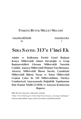 313 Ek 1
