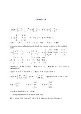Cevaplar 4