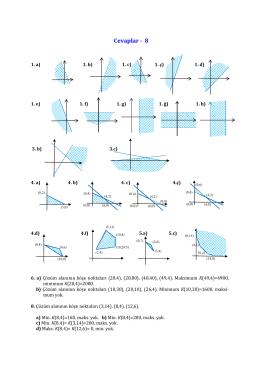 Cevaplar 8