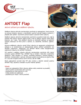 ANTIDET Flap - VST engineering
