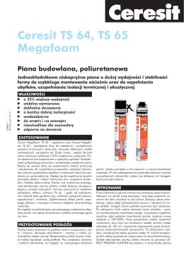 Ceresit TS 64, TS 65 Megafoam - LAK-BIS