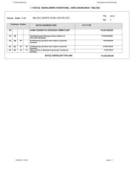 1.7 bütçe giderlerinin fonksiyonel sınıflandırılması tablosu 03 kamu