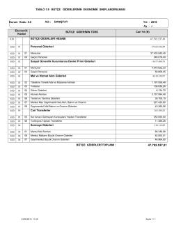 Bütçe Giderlerinin Ekonomik Sınıflandırılması Tablosu