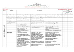 01-30 NİSA N 2016 - Okul Yıllık Gelişim Modeli