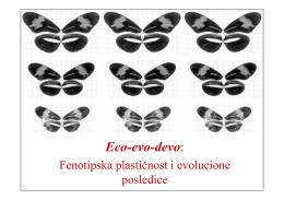 Eco-evo