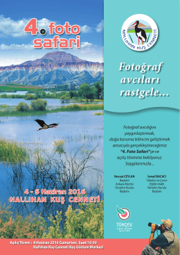 TÜKÇEV-Nallıhan Kuş Cenneti 4.Fotoğraf Avcıları Rastgele