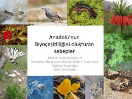 Tür çeşitliliği - Hacettepe Üniversitesi