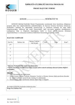 işbirliği-güçbirliği destek programı proje başvuru formu