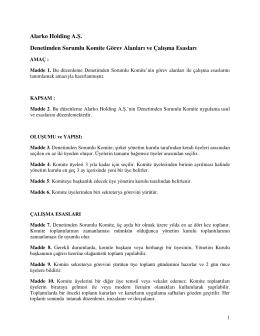 Denetimden Sorumlu Komite Görev Alanları ve Çalışma