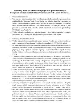 pravidly účasti na zahraničních projektech