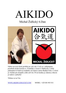 Michal Židlický 6.Dan - Aikido Michal Židlický