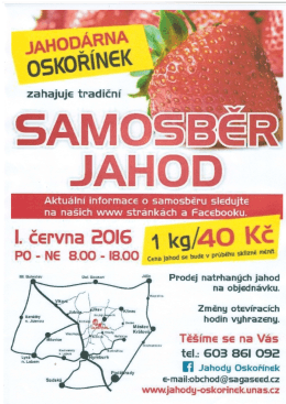 Samosběr jahod - Jahodárna Oskořínek