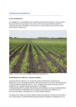 Zelena prognoza 07062016