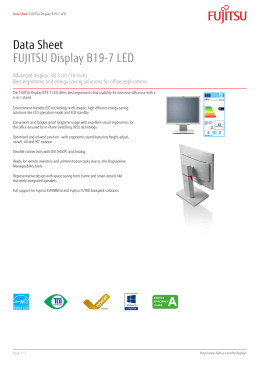 Data Sheet FUJITSU Display B19