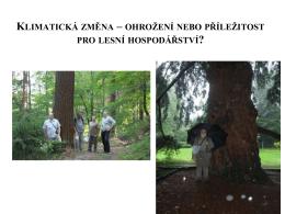 Přírodě blízké hospodaření v lese – jeho místo v lesnické vědě a