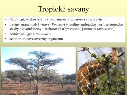Travinné biomy Země – savany a stepi
