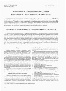 modelowanie zawiesinowego stapiania koncentratu - SIGMA-NOT