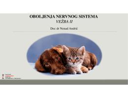 Vežbe - Neurologija 2 - Fakultet veterinarske medicine Beograd
