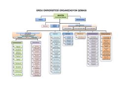 ordu üniversitesi organizasyon şeması