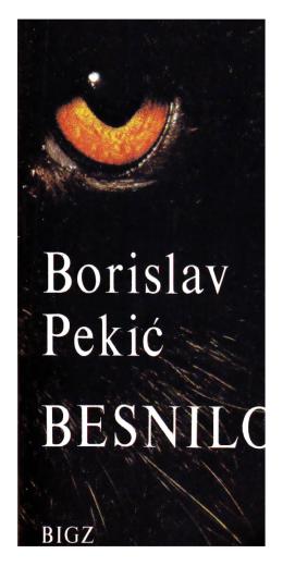 Borislav Pekić – Besnilo
