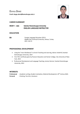 duygu deni̇z career summary education professional development