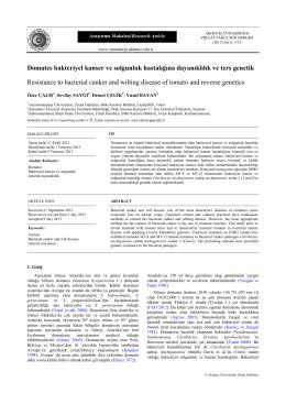 PDF ( 12 )