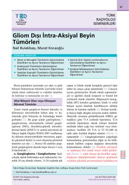 Tam Metin  - Türk Radyoloji Seminerleri